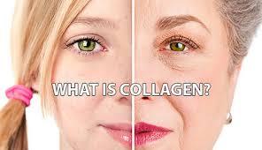 Collagen giúp bạn chăm sóc tóc và phục hồi mái tóc hư tổn như thế nào?
